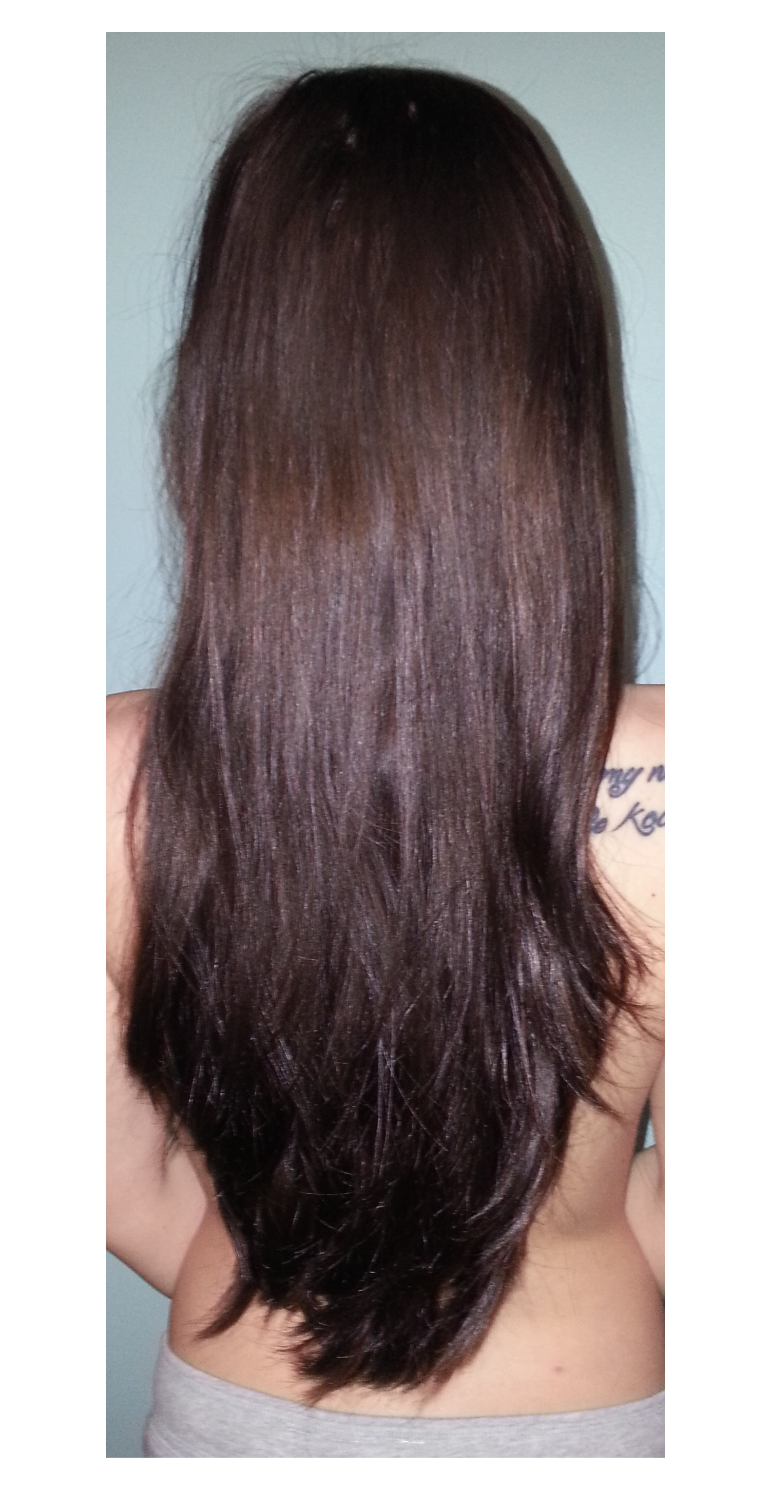 Step Cut For Long Straight Hair Back View Impression