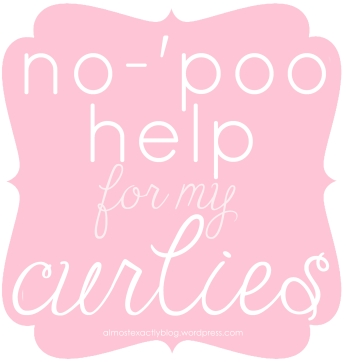 no-'poo help for my curly girls