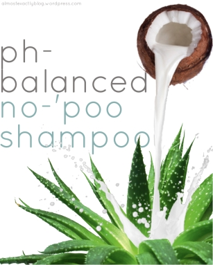 ph-balanced no-poo shampoo